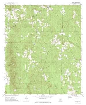 Bethel topo map