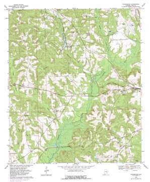 Youngblood topo map