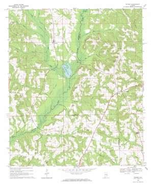 Petrey topo map