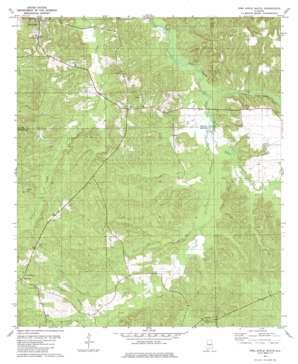 Pine Apple South topo map
