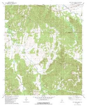 Pine Apple North topo map