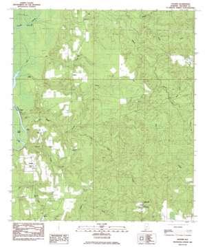Vaughn topo map
