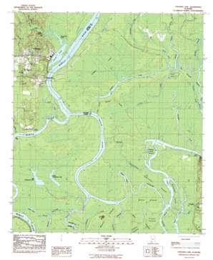 Stiggins Lake topo map