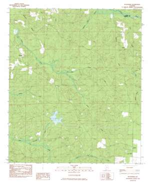 Blacksher topo map