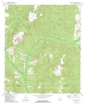 Frisco City Se topo map