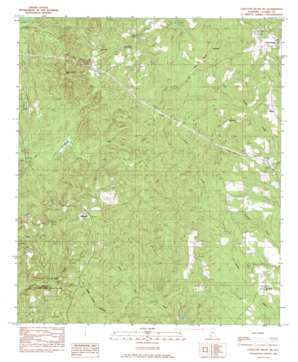 Choctaw Bluff topo map