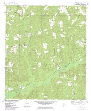 Walker Springs topo map