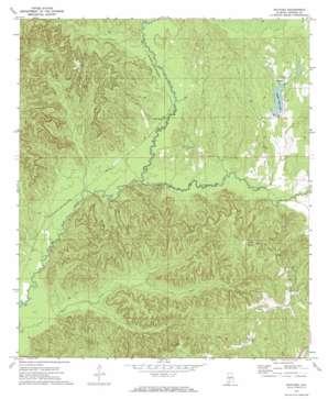 Natchez topo map