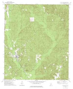 Fulton East topo map