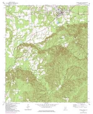 Camden South topo map