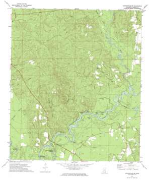 Leakesville Sw topo map