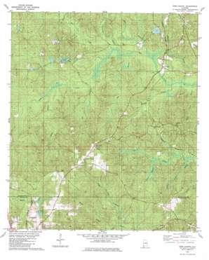 Sims Chapel topo map