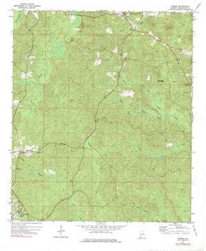 Bigbee topo map