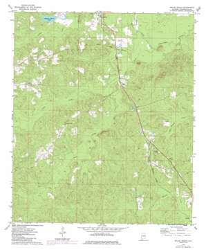 Millry South topo map