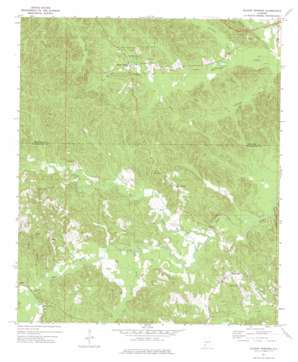 Bladon Springs USGS topographic map 31088f2