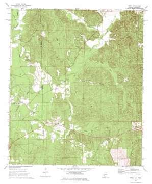Isney topo map