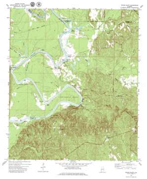 Woods Bluff USGS topographic map 31088h1