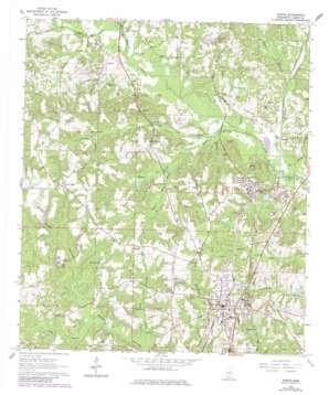 Purvis topo map