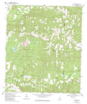Pinebur USGS topographic map 31089b6