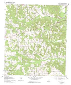 Sandy Hook Nw topo map