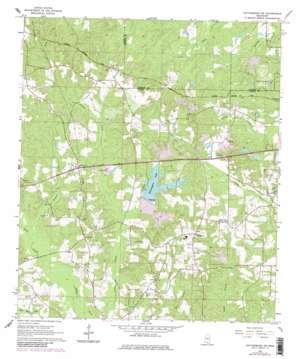 Hattiesburg SW USGS topographic map 31089c4