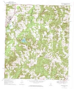 Prentiss East topo map