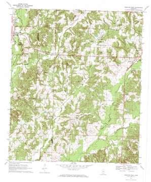 Prentiss West topo map