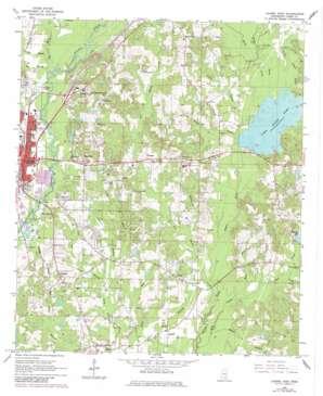 Laurel East topo map