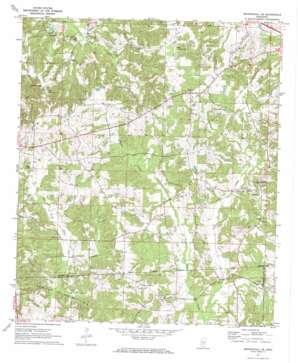 Mendenhall SE USGS topographic map 31089g7