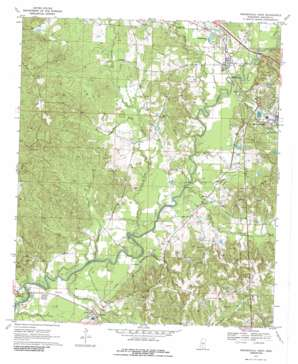 Mendenhall West topo map