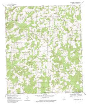 Tylertown SE USGS topographic map 31090a1