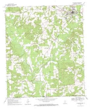 Tylertown topo map