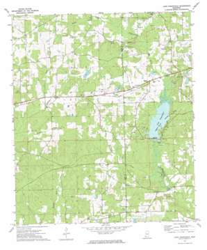 Lake Tangipahoa USGS topographic map 31090b5
