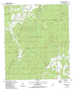 Homochitto topo map