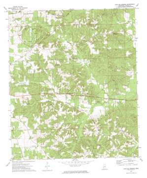 Fair Oak Springs topo map