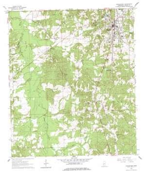 Hazlehurst topo map