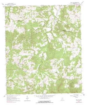 Red Lick topo map
