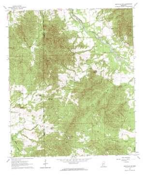 Dentville Nw topo map