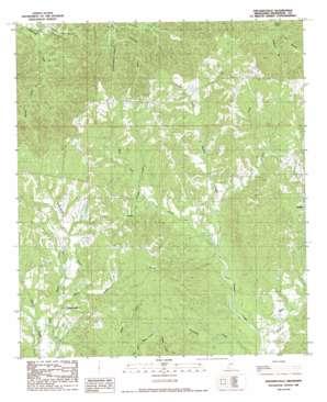 Pinckneyville topo map