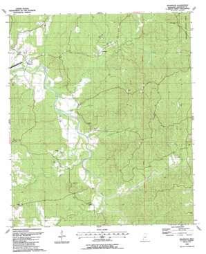 Wilkinson topo map