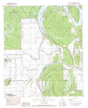 Larto Lake South topo map