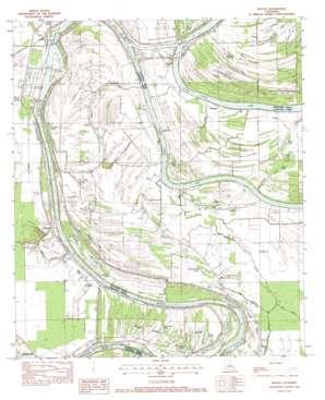 Mayna topo map