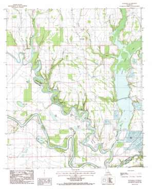 Extension USGS topographic map 31091h7
