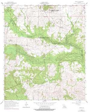 Temple topo map