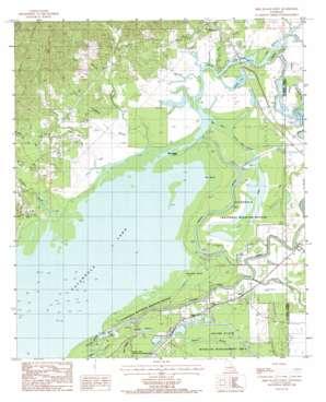 Bird Island Point topo map