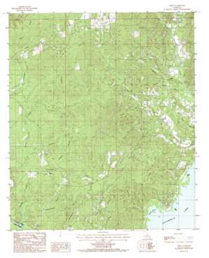 Nebo topo map