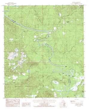 Fishville topo map