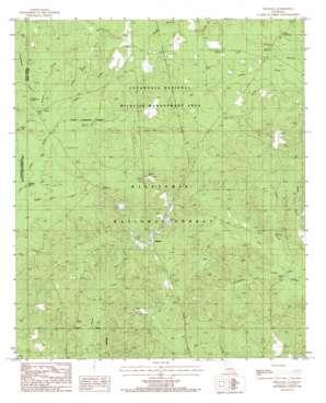 Williana topo map