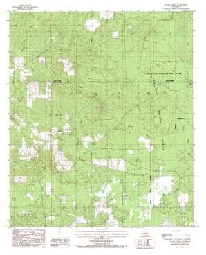 Savage Creek USGS topographic map 31092f6