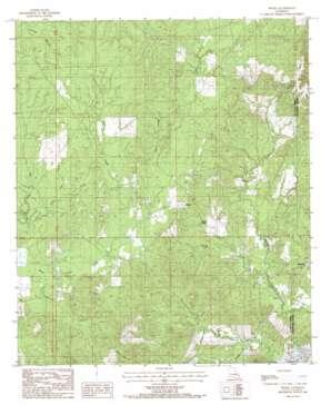 Nickel topo map